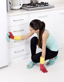 Cleaning the house Stock Photography