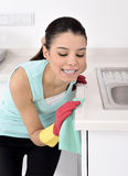 Cleaning the house Royalty Free Stock Image