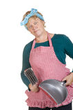 Cleaning house wife Stock Image