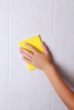 Cleaning kitchen tiles with sponge Royalty Free Stock Images