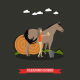 Cleaning końska wektorowa ilustracja w mieszkanie stylu ilustracji