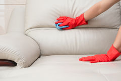 Cleaning leather sofa Stock Photo