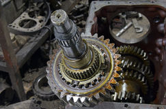The cleaning and lubrication of the shaft and gears Stock Photos