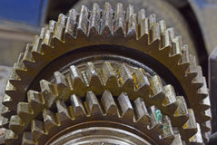 The cleaning and lubrication of the shaft and gears Stock Images