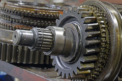 The cleaning and lubrication of the shaft and gears Royalty Free Stock Image