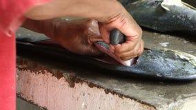 Cleaning Mahi-Mahi dla restauraci w karaibskim zdjęcie wideo