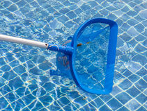 Cleaning and maintenance swimming pool with cleaning net, blue s Royalty Free Stock Images
