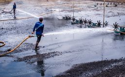 Cleaning the mud at the bottom of pond. CHACHOENGSAO THAILAND - JULY 13 : Unidentified men control high pressure water jet nozzle to clean the mud at the bottom stock photos