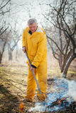 Cleaning Orchard With A Rake Royalty Free Stock Images