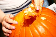 Cleaning Out The Pumpkin Stock Photo