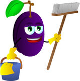 Cleaning plum Royalty Free Stock Photos