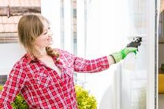 cleaning pojęcia dishwashing ciecza gąbki Młodej kobiety płuczkowy okno, zakończenie w górę zdjęcia royalty free