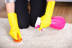 Cleaning. Portrait of woman is doing some cleaning work in the house Stock Photo