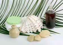 Cleaning products for bath and spa stock photography