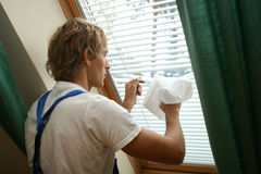 cleaning profesjonalista Obrazy Stock