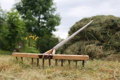 Cleaning with a rake on a farm. Cleaning grass and leaves with a rake on a farmr Stock Images