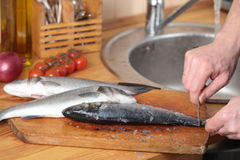Cleaning a sea bass. Cook cleaning a sea bass on a wooden cutting board stock photography
