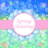 Cleaning services. Blurred spring background. The concept of pur Stock Photo