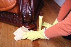 Cleaning the sofa. Stock Photo