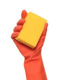 Cleaning sponge. Royalty Free Stock Images