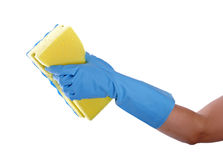 Cleaning with sponge Royalty Free Stock Images