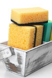 Cleaning sponges Stock Photography