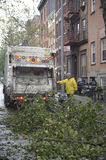 Cleaning after storm Sandy. Cleaning crews picking up branches after super storm Sandy Stock Images