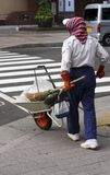 Cleaning the street. Volunteer woman with specific equipment for cleaning the street in a big city Royalty Free Stock Images