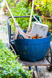 Cleaning supplies Garden Stock Photos