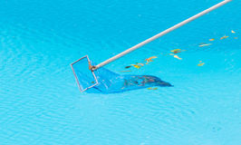 Cleaning swimming pool. Stock Photos
