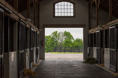 Cleaning Time in Horse Barn Stock Photography