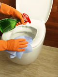 Cleaning a toilet Royalty Free Stock Photo
