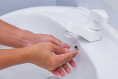 Cleaning. Toilet flush cleaning water bathroom Stock Images
