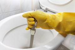 Cleaning toilets Stock Image