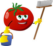 Cleaning tomato Royalty Free Stock Photo