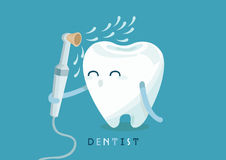 Cleaning tooth Royalty Free Stock Image