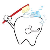 Cleaning tooth Royalty Free Stock Images