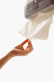 Cleaning Up  with Absorbent Paper Towel. For hand clean up Stock Images