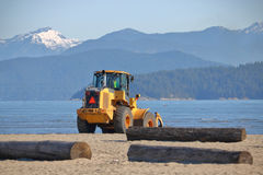 Cleaning Up the Beachfront Royalty Free Stock Photos