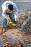 Cleaning Up Storm Damage with a Chainsaw Stock Photography