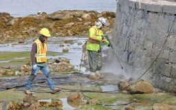 Cleaning Vancouver`s Seawall Royalty Free Stock Photos
