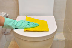 Cleaning the water closet Royalty Free Stock Photos