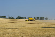 Cleaning of wheat on hilly terrain Stock Photography