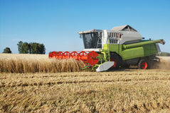 Cleaning of a wheaten field by a combine Stock Photos
