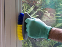 Cleaning window frame Royalty Free Stock Images