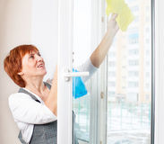 Cleaning window Royalty Free Stock Photos