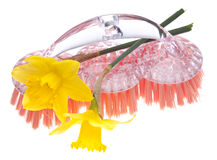 cleaning wiosna Obraz Stock
