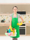 Cleaning woman at home Stock Images
