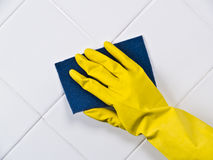 cleaningtegelplatta arkivbilder