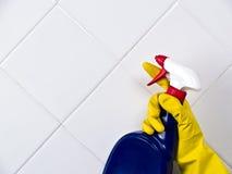 cleaningtegelplatta Arkivfoto